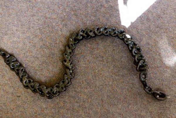 Karl Strange - Snake